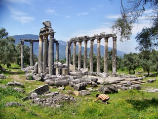 temple-of-zeus-was-built-between-470-bc-and-456-bc-olympia-greece1152_12922848619-tpfil02aw-12935